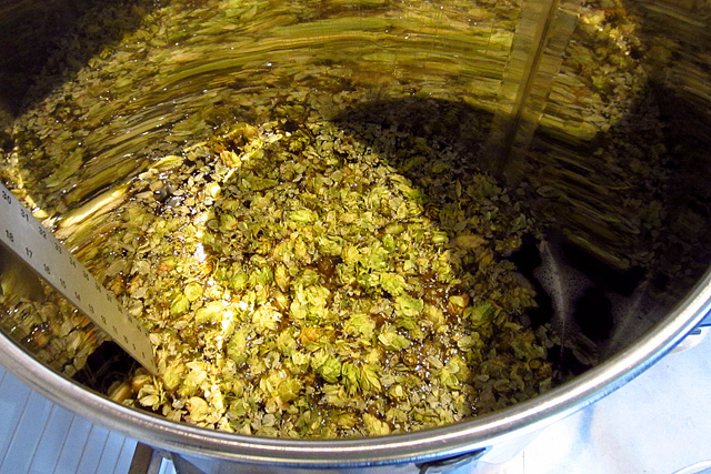 Barley Forge hops