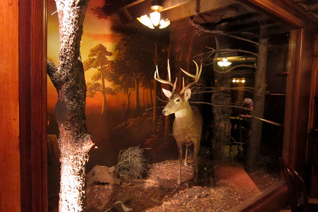 Deer in the forest diorama at Clifton's Cafeteria