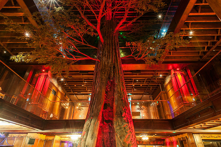 Redwood tree at Clifton's Cafeteria